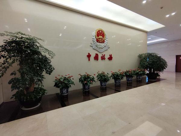 国家税务总局广东省税务局弱电维保项目