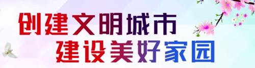 利凯(宁港)公司组织站点查车, 履行文明城市创建责任