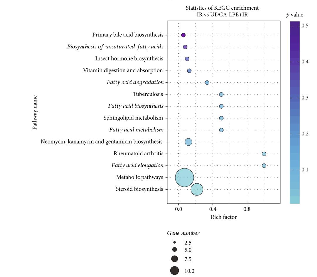 拜谱项目文章 | 脂质组学分析揭示OA治疗可能是预防和治疗I/R肝损伤的有效途径