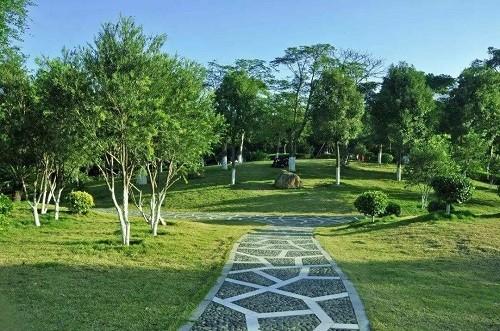 园林绿化与荒山造林