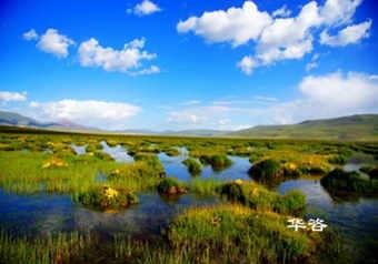 湖南贝博网单位-公路建设项目环境影响贝博网报告编制公司_华咨生态环境保护