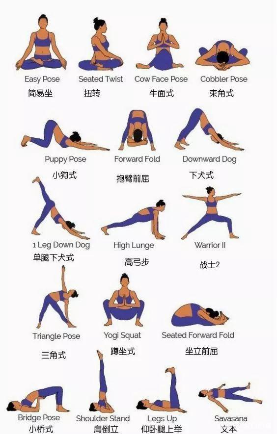 6套流瑜伽系列 配合呼吸一起来吧