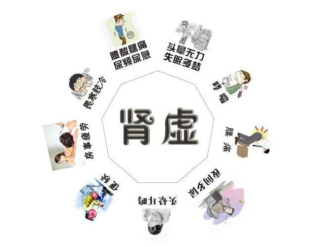 中医肿瘤学术传承人雷晓林教授:肾虚夜尿多,该这样药补!