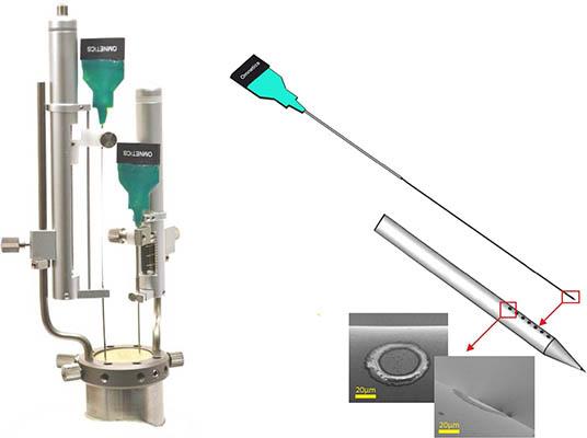 多通道线性电极-Thomas RECORDING大动物神经植入电极