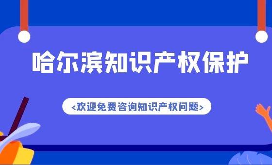 哈尔滨为提高营商环境强化对知识产权保护