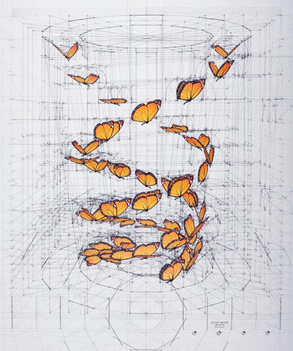 当艺术遇见数学丨 画画里数学最好的也是数学里画画最好的