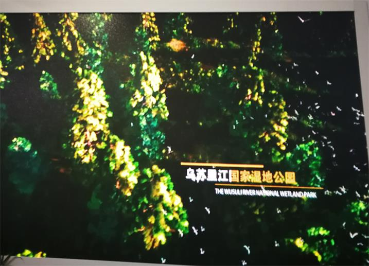 南阳市南都斐翠山营销中心LED高清全彩专用P2.0表贴单元板(奥马哈)