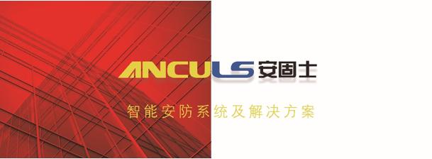 """成立""""出入口事业部"""",bob电竞ios士ANCULS企业发展再添一翼"""