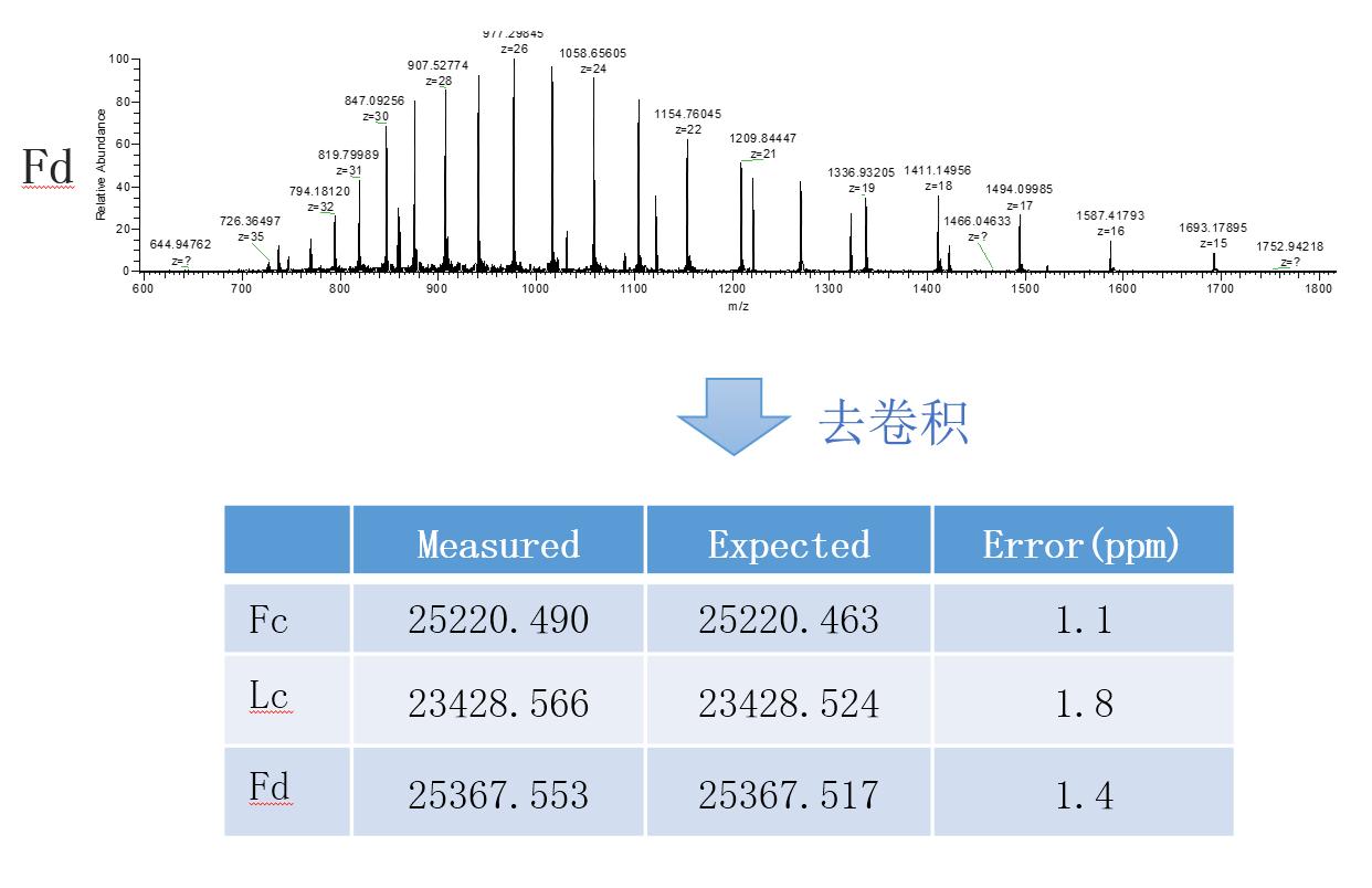 高分辨分子量检测