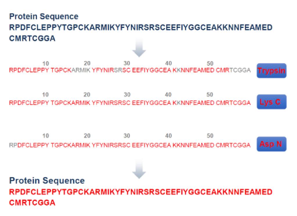 质谱法全序列分析