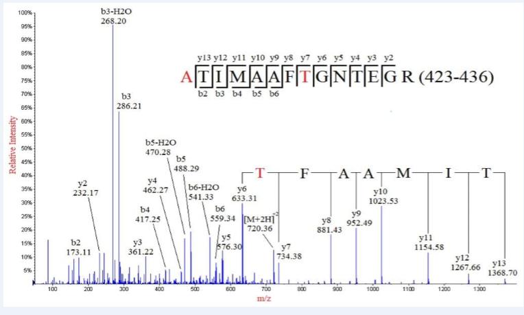质谱法N/C端测序