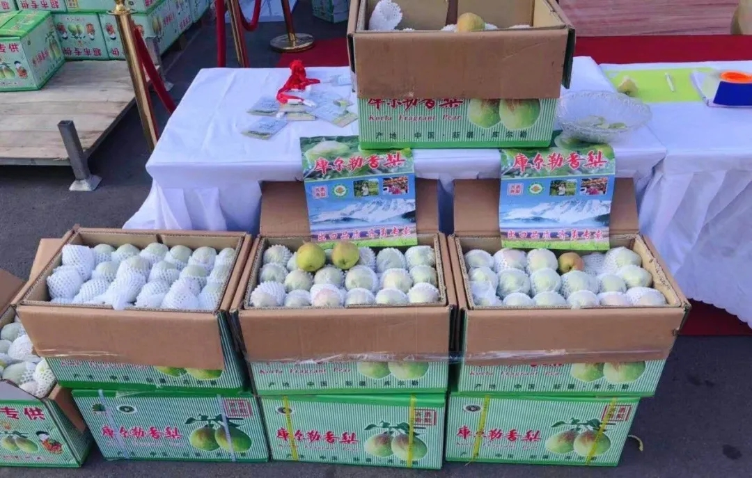 """""""西域圣果 梨你很近""""——库尔勒香梨推介会在堤口果品批发市场举行"""