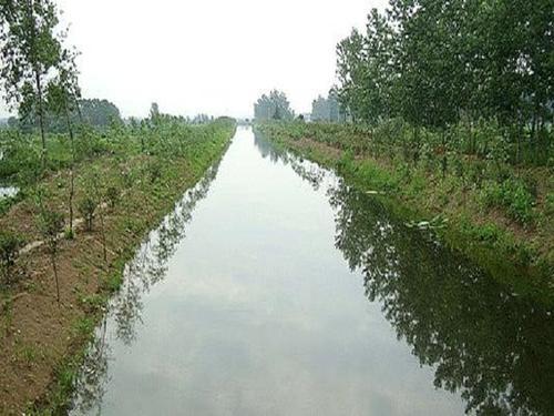 黑臭河道污水凈化技術有哪些特點?