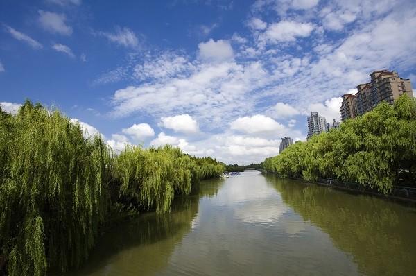 黑臭河道水污染治理遵從哪些原則?
