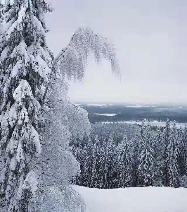 今日冬至丨晴过冬至兆丰穰