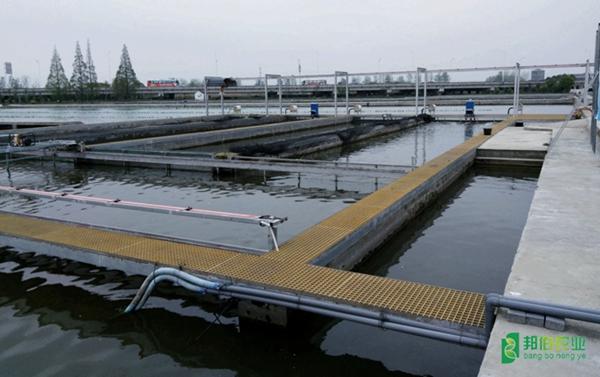智慧水產養殖管控系統