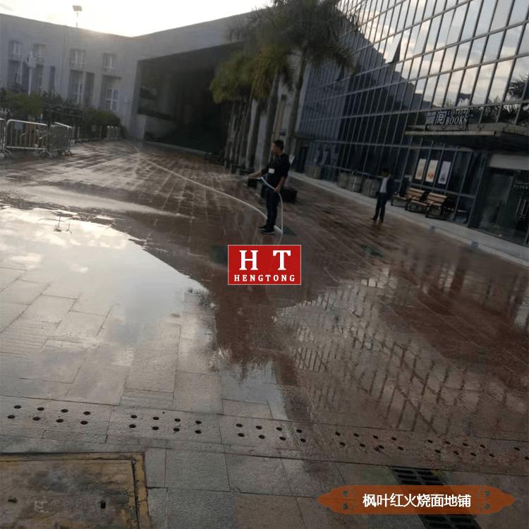 深圳体育中心广场枫叶红火烧面地铺
