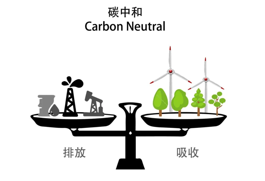 """""""碳中和"""",跟你有多大关系?"""