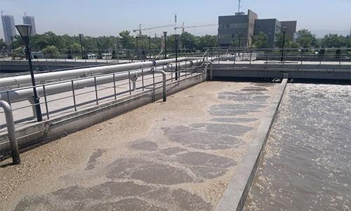 湖北宜昌某垃圾填埋厂去除氨氮
