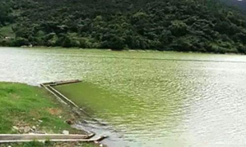 宁波某水库治理项目