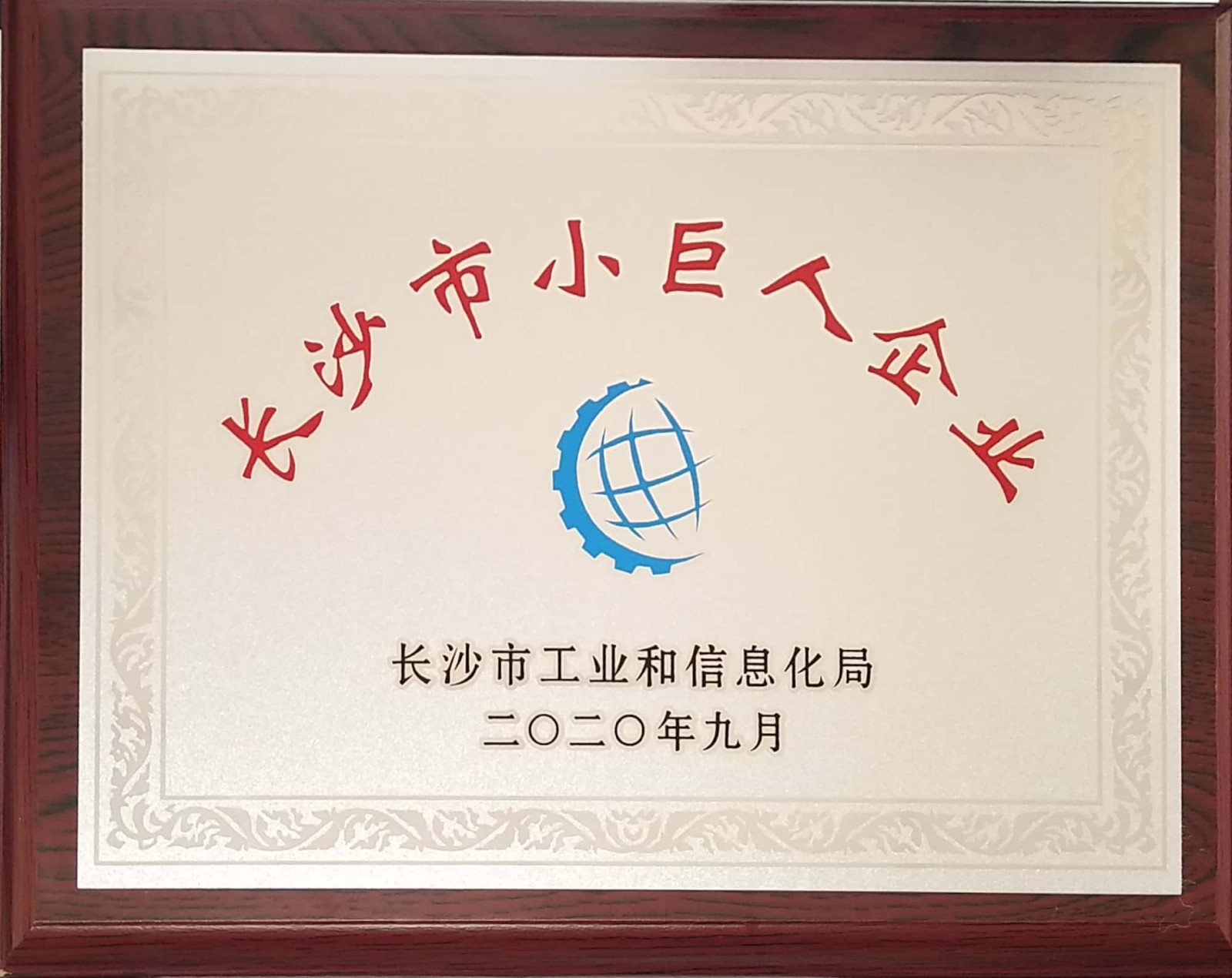 长沙市小巨人企业奖牌