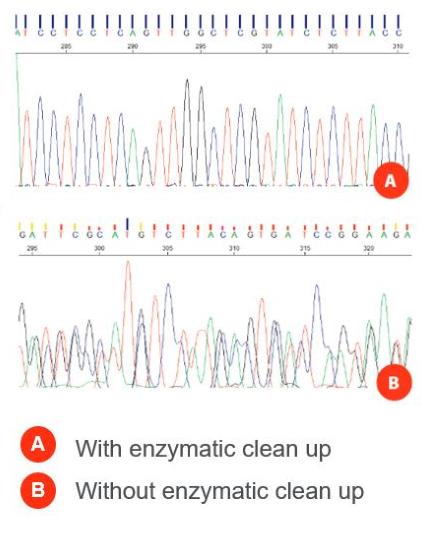 PCR产物酶纯化试剂盒