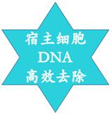 HL-SAN热不稳定性耐高盐核酸酶