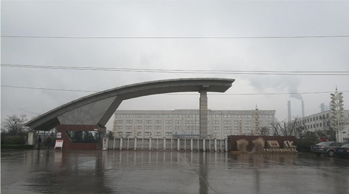 江苏某石化公司项目