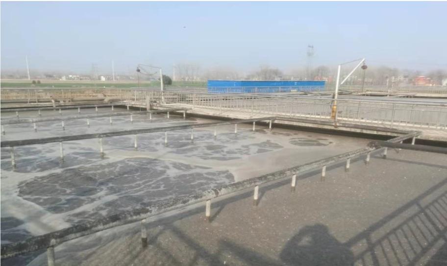 河南某皮业工业废水降解氨氮
