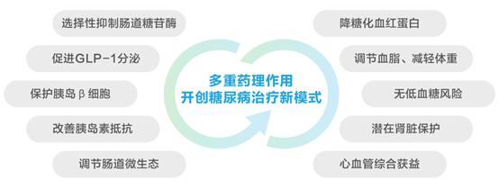 桑枝總生物堿片榮登2020年度中國藥學十大事件榜首