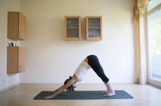适合春日练习的流瑜伽运动系列