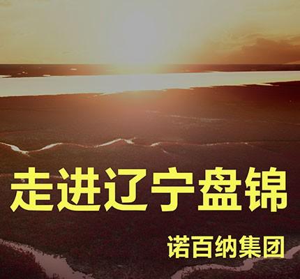 【暖心计划】在辽宁盘锦与您相遇