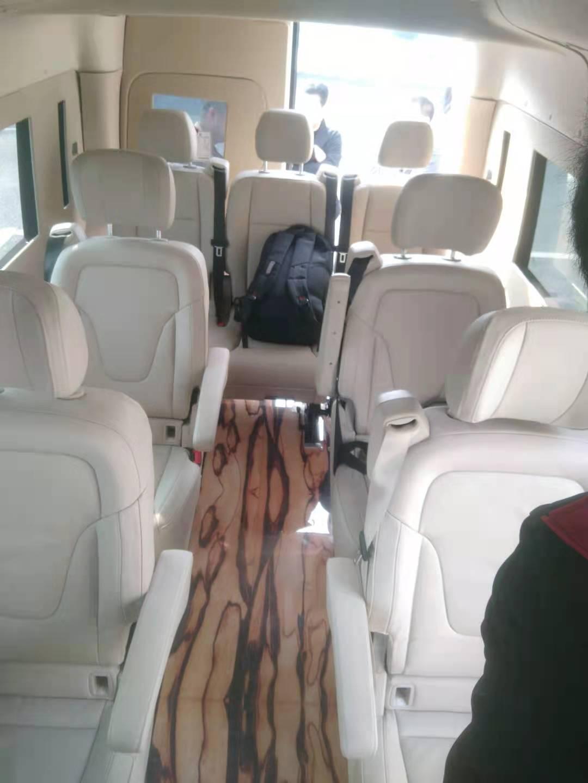 图雅诺9座商务车