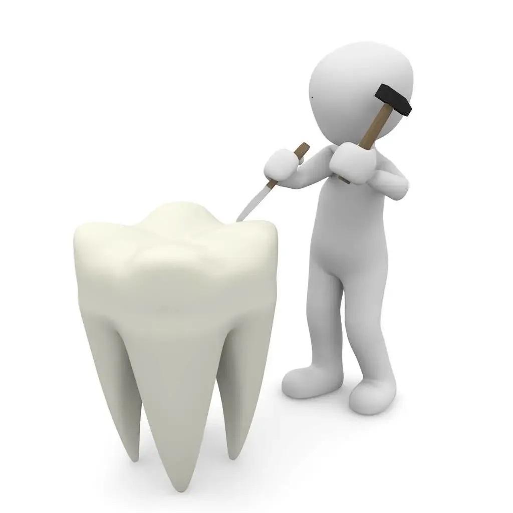 亚澳科普角 | 人类的第三副牙齿