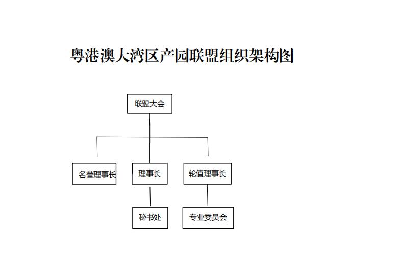 粤港澳大湾区产园联盟  组织架构