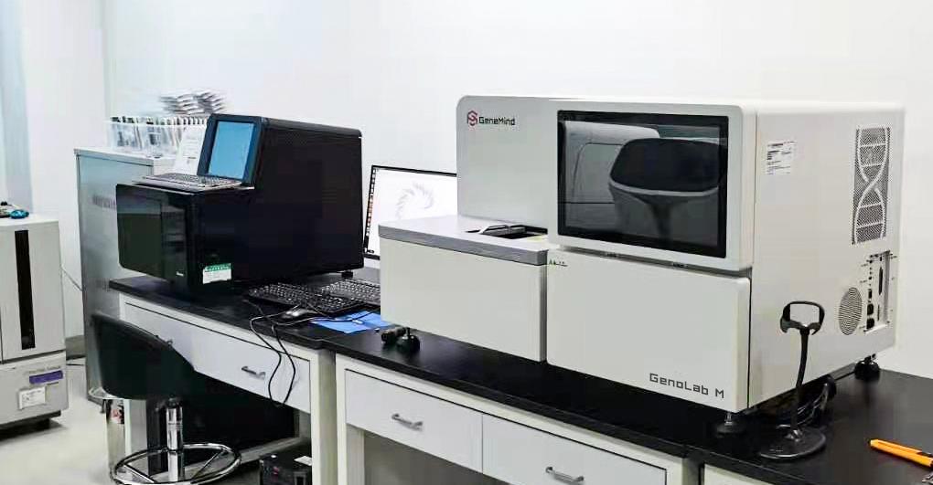 真迈生物完成4.1亿元B+轮融资,助力国产基因测序平台市场布局和产品创新