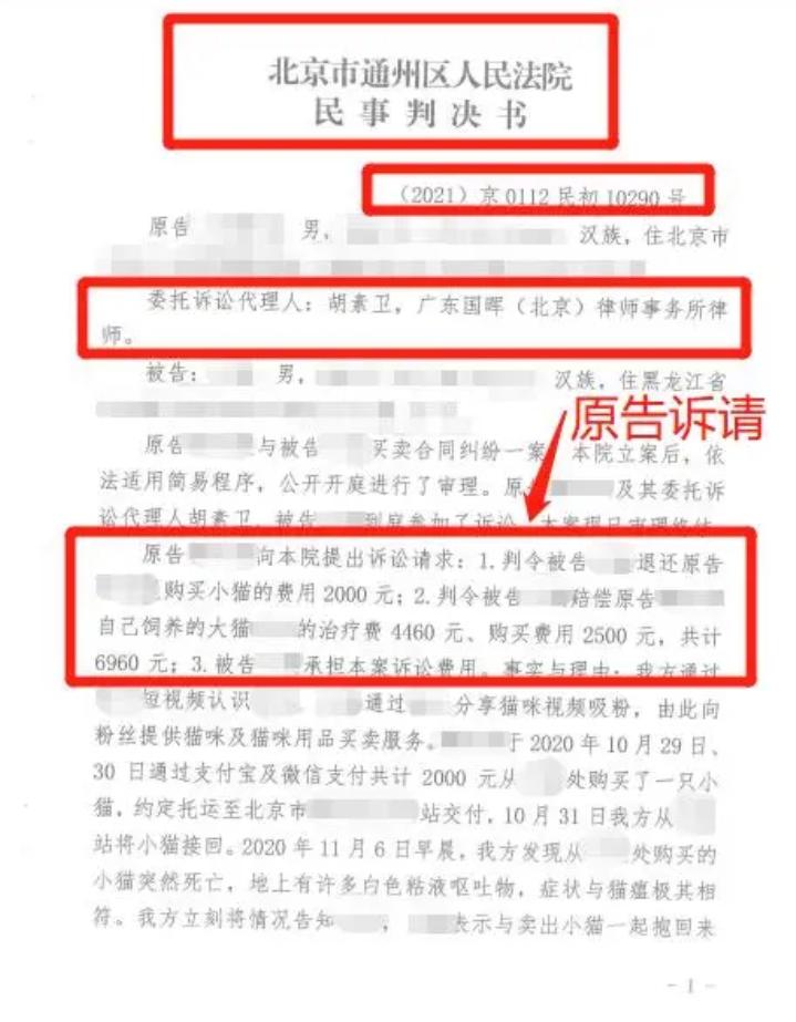 """国晖北京- 网购买到了""""星期猫""""导致自家名贵猫死亡,损失谁来赔?"""
