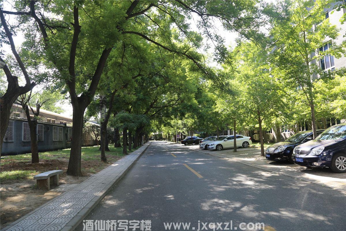 中国康养·文旅,特色小镇大健康产业迎来真正爆发期!